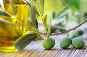 olive oil contains good fats