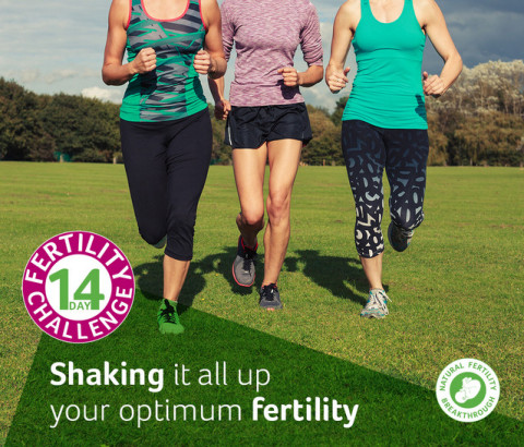 14 Day Fertility Challenge exercise for fertility