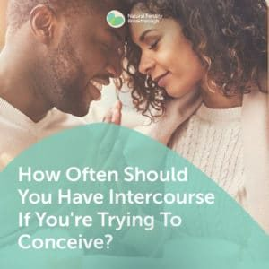 23-How-Often-Should-You-Have-Intercourse-If-Youre-Trying-To-Con