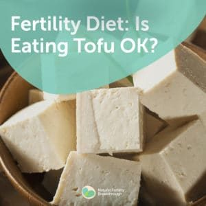 52-Fertility-Diet-Is-Eating-Tofu-OK