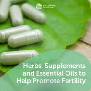 77-Herbs-Supplements-Essential-Oils-to-Help-Promote-Fertility