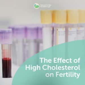 82-The-Effect-of-High-Cholesterol-on-Fertility